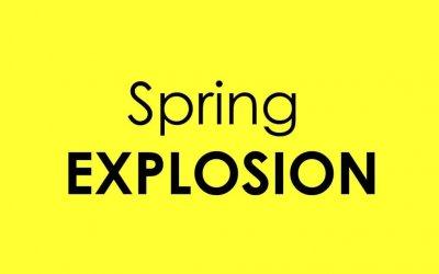 Frühlingsexplosionen und Wein – eine zauberhafte Mischung