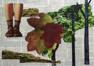 Füße in Socken, Blätter, Bäume, grün, braun, rotbraun