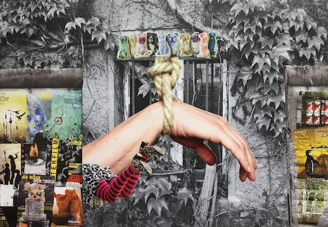 Efeu und Fenster alt in sw im Hintergrund, bunte Mauer rechts und links, Hand im Seil hängend, Hundekissen darüber, Beine in gestreifter Strumpfhose
