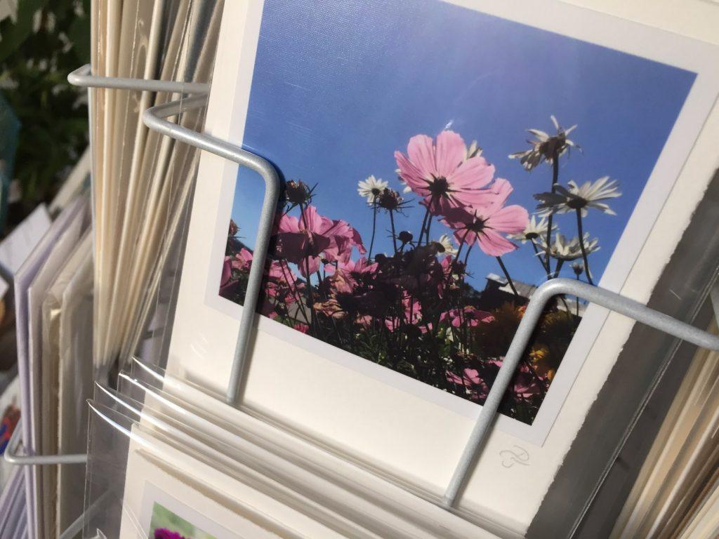 Der Sommer ist mit dabei, Fotografie Grußkarte handgefertigt, 2016, (c) hehocra