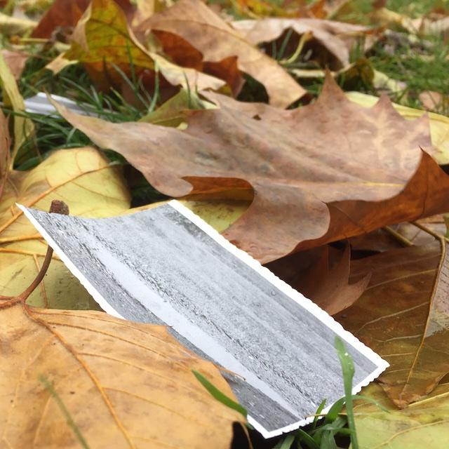 Eine Pfütze auf Papier im Herbst 1, (c) hehocra