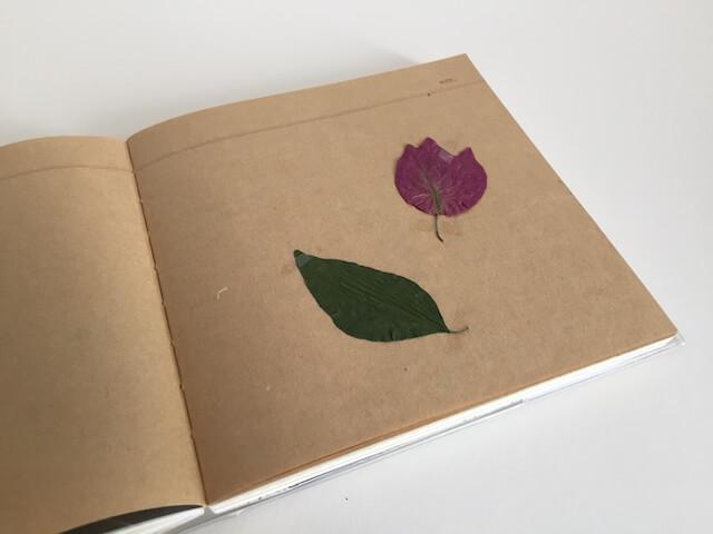 Natur im Reisetagebuch, by hehocra