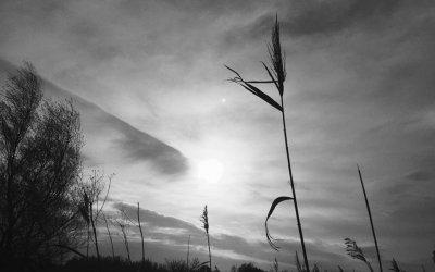 7 Tage 7 Schwarzweißfotografien aus meinem Leben