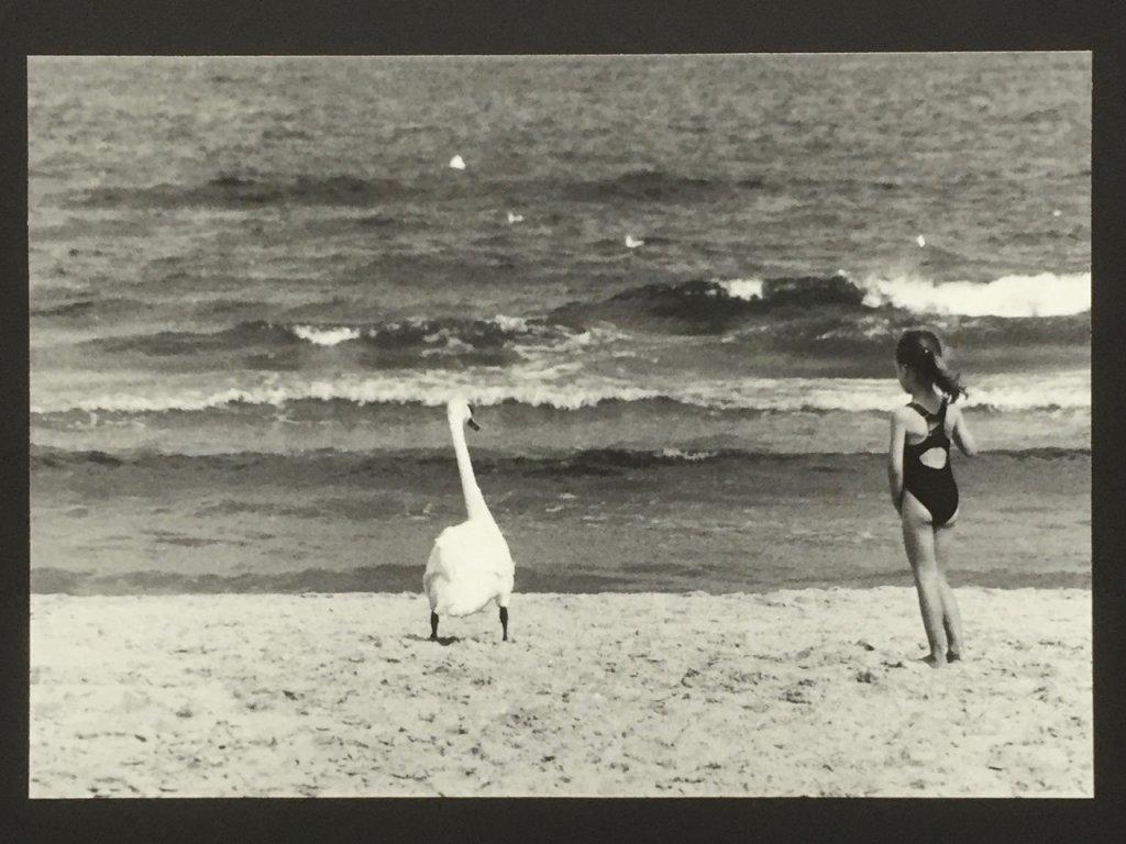 Kind und Schwan an der Ostsee, Rügen, sw analog, 1997, (c) Doreen Trittel