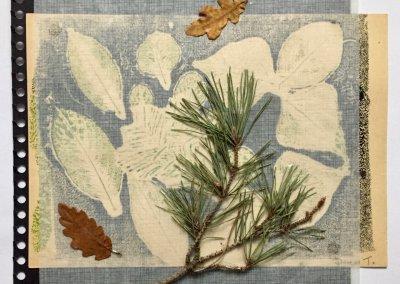 Blätter Zeiten 1/9, Collage, (c) Doreen Trittel