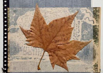 Blätter Zeiten 3/9, Collage, (c) Doreen Trittel