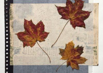 Blätter Zeiten 4/9, Collage, (c) Doreen Trittel