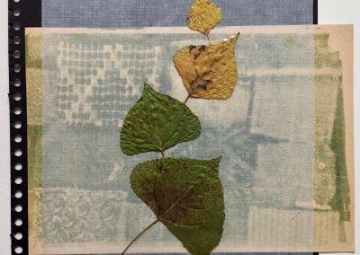Blätter Zeiten 5/9, Collage, (c) Doreen Trittel