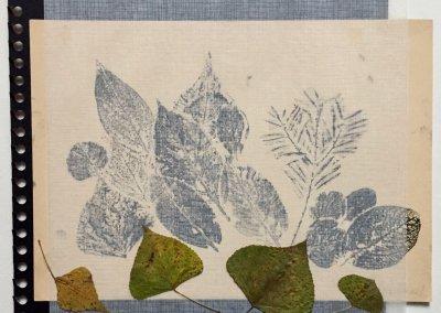 Blätter Zeiten 6/9, Collage, (c) Doreen Trittel