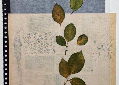 Blätter Zeiten 7/9, Collage, (c) Doreen Trittel