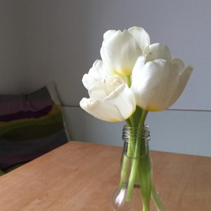 Tulpen weiß, 2016, (c) Doreen Trittel