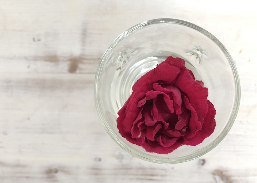 Rote Rose im Glas